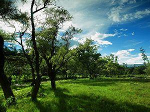 Région Cajamarca