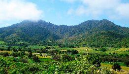 Cerros de Amotape