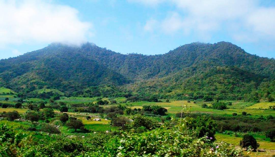 Cerros de Amotape, Piura, Peru