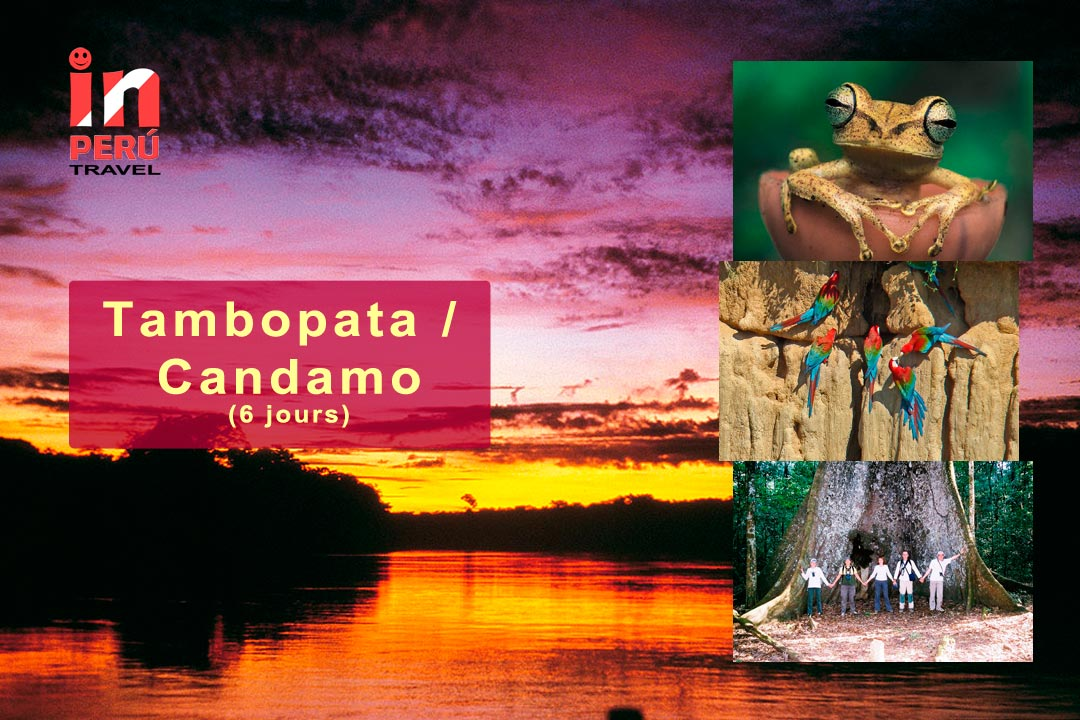 Réserve Nationale Tambopata Candamo